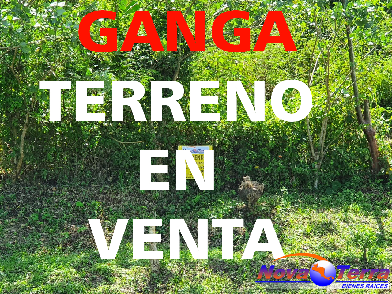 Ganga de lote de terreno Cieneguita, Cortes